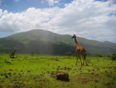 Екскурзии в Южна Африка